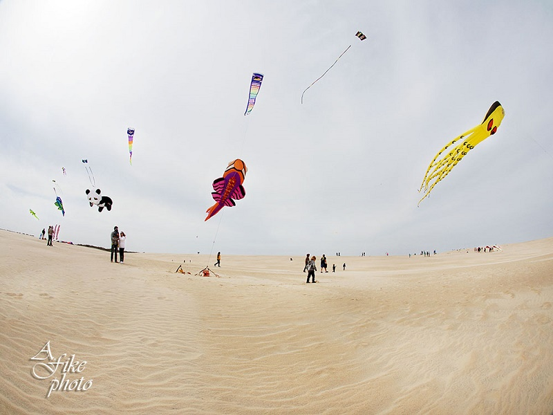 Kite Flying on Jockey's Ridge in Nags Head, NC